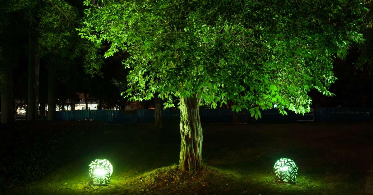 Party Verlichting Tuin : Inspiratie voor de buitenverlichting