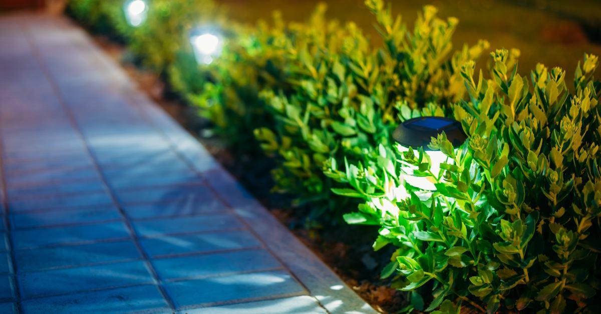 Buitenverlichting-tussen-planten
