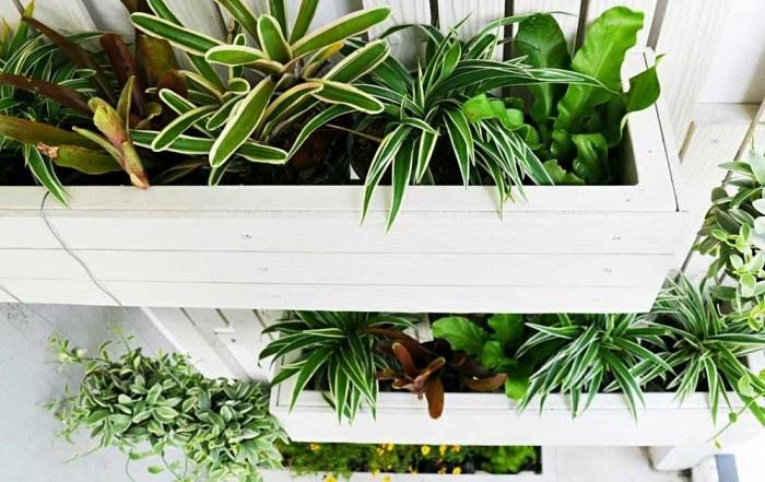 Verticale tuin zelf maken cover