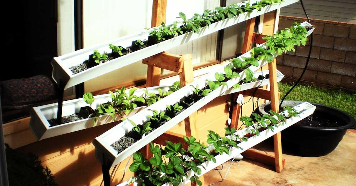 Verticale Tuin Binnen : Zelf een verticale tuin & plantenmuur maken buitenlevengevoel.nl