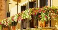 Bloemen-aan-ballustrade-balkon