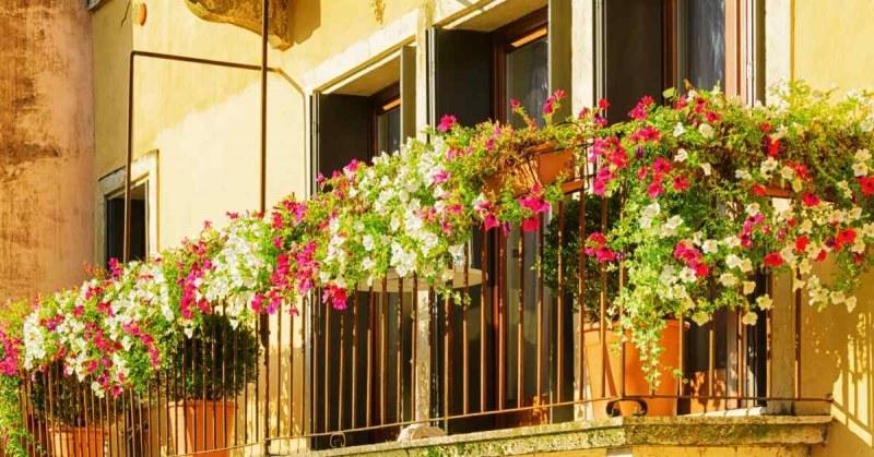 Bohemian Balkon Inrichting : Balkon inrichten balkon inspiratie buitenlevengevoel