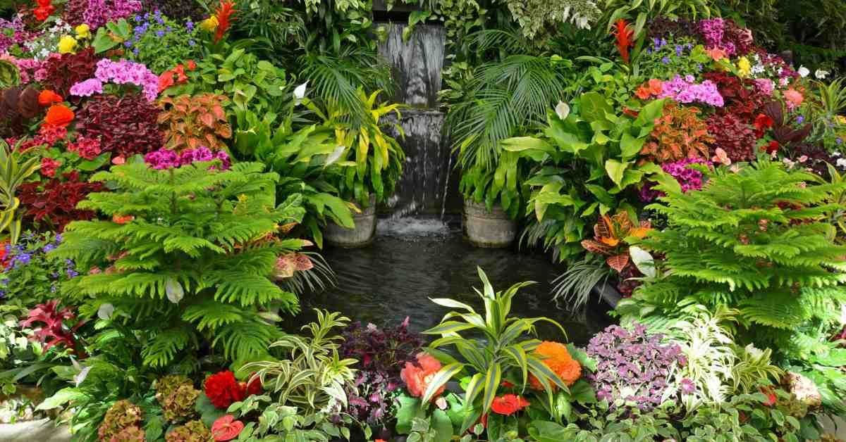 Bloemen-rondom-vijver