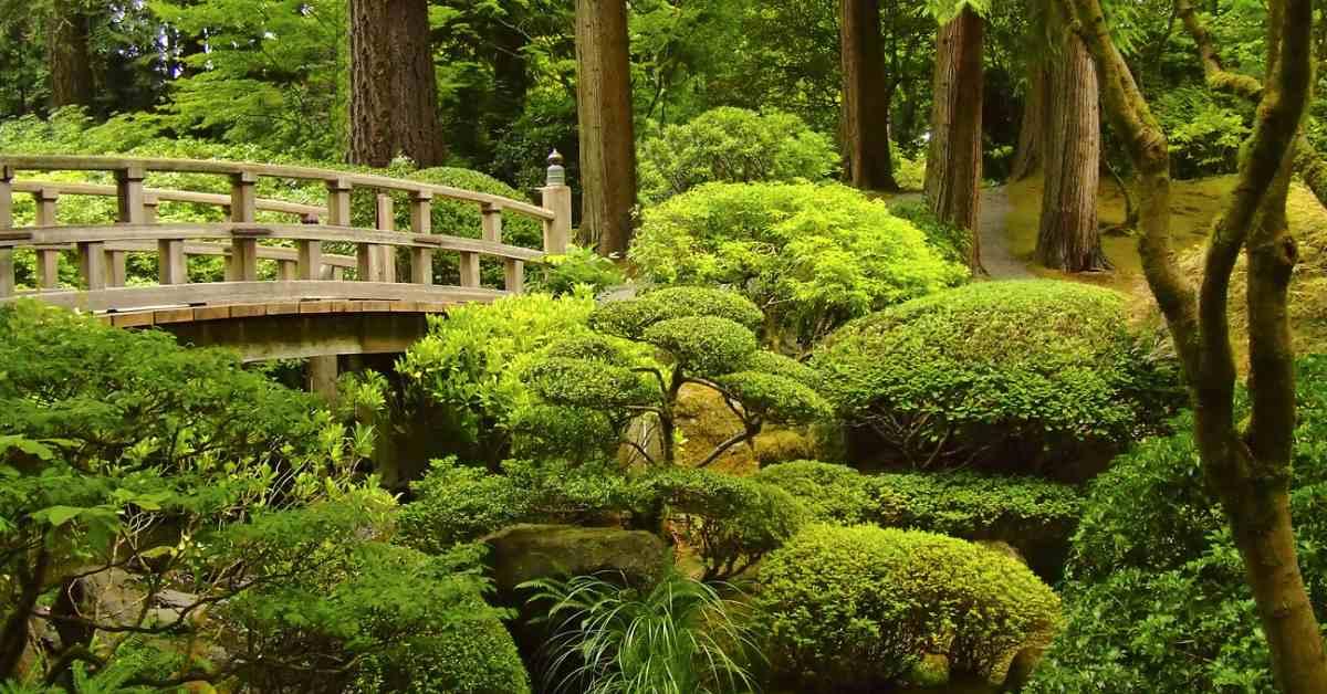 Oosterse Tuin Ideeen : Japanse tuin aanleggen alle tips buitenlevengevoel