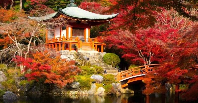 Japanse tuin aanleggen alle tips for Tuin aanleggen tips