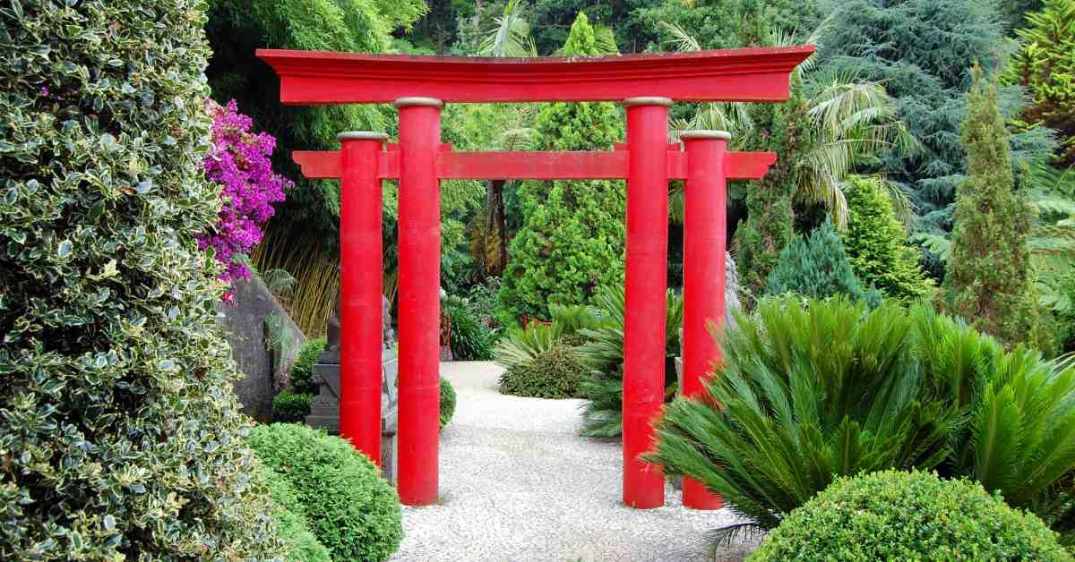 Een japanse tuin aanleggen deze gebruiken moet je kennen - Kleine tuin zen buiten ...