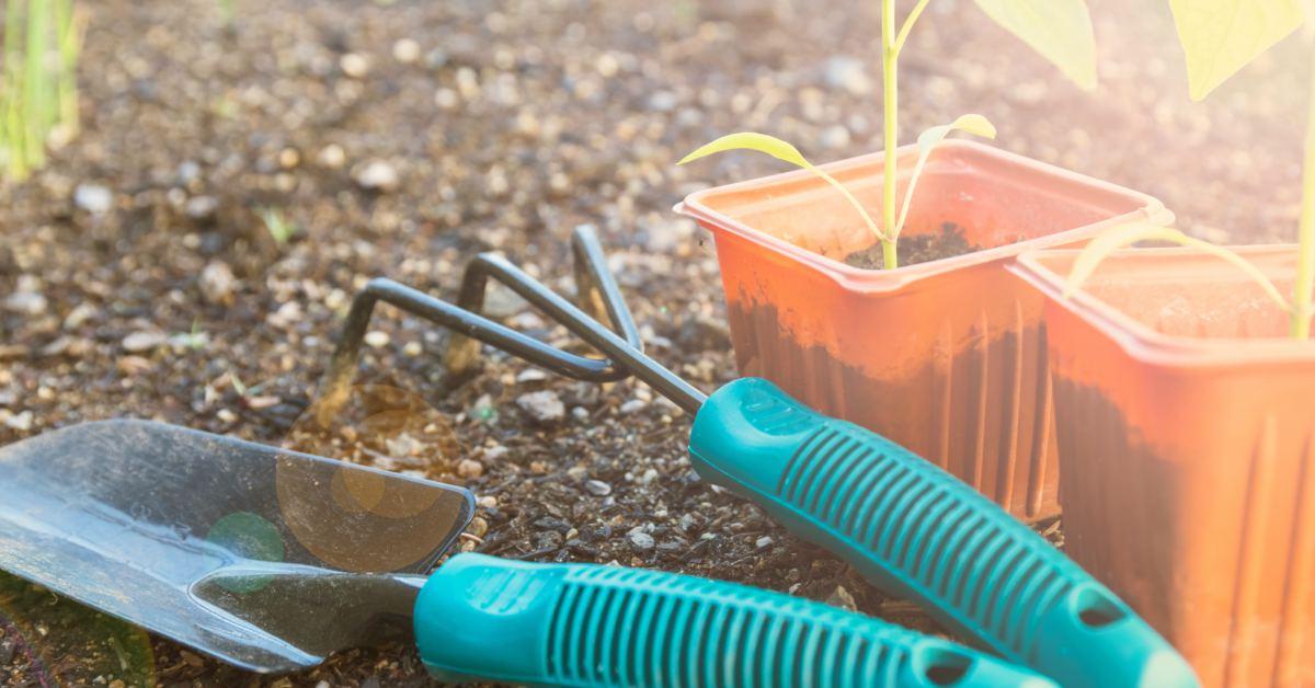 Moestuin-met-tuingereedschap