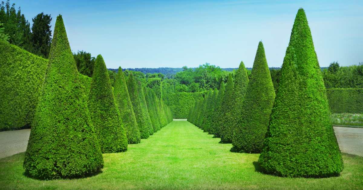 Franse tuin franse tuin idee n for Franse tuin