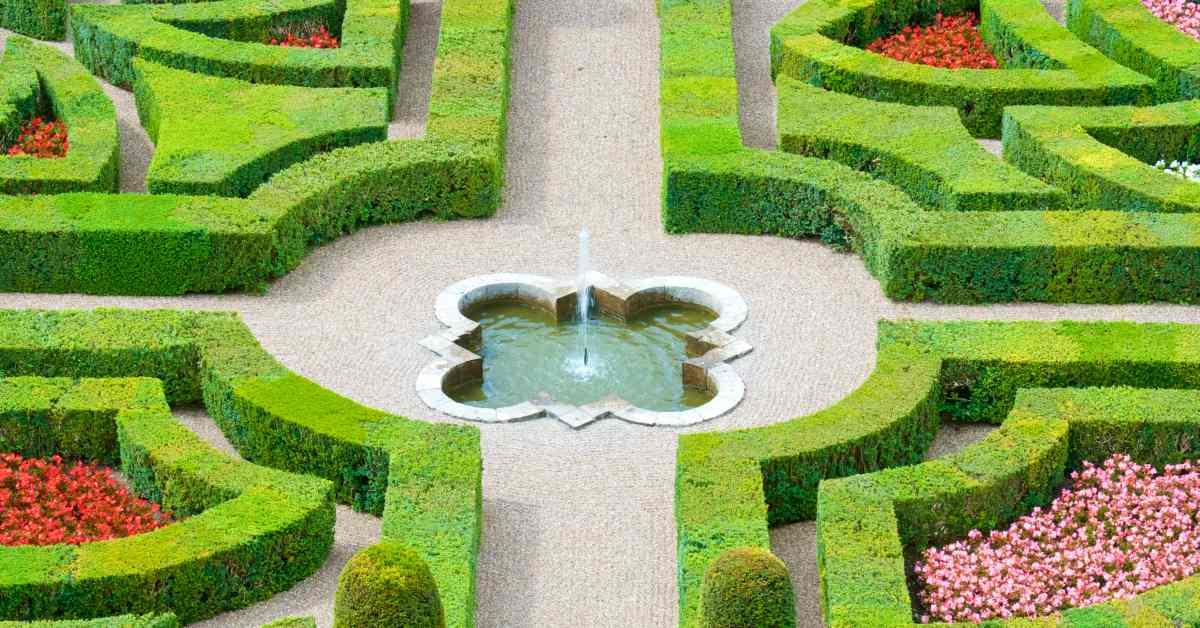 Symmetrie-van-buxushaag