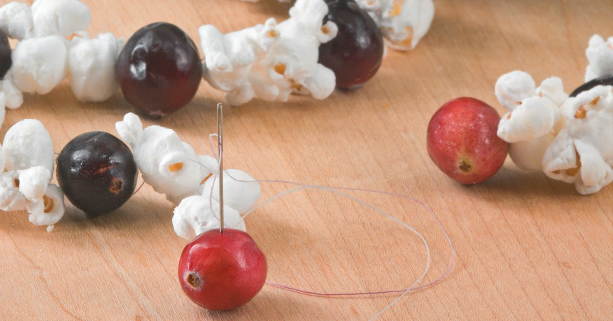 popcorn en cranberry