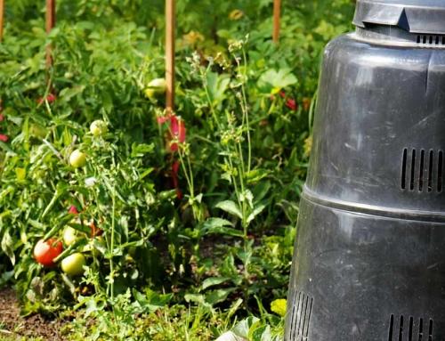 Compost en alles over hoe je zelf compost kan maken (composteren)