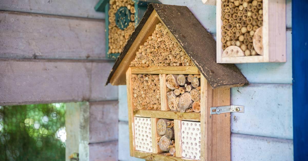 Plaatsen bijenhotel