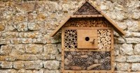 Zelfgemaakt bijenhotel