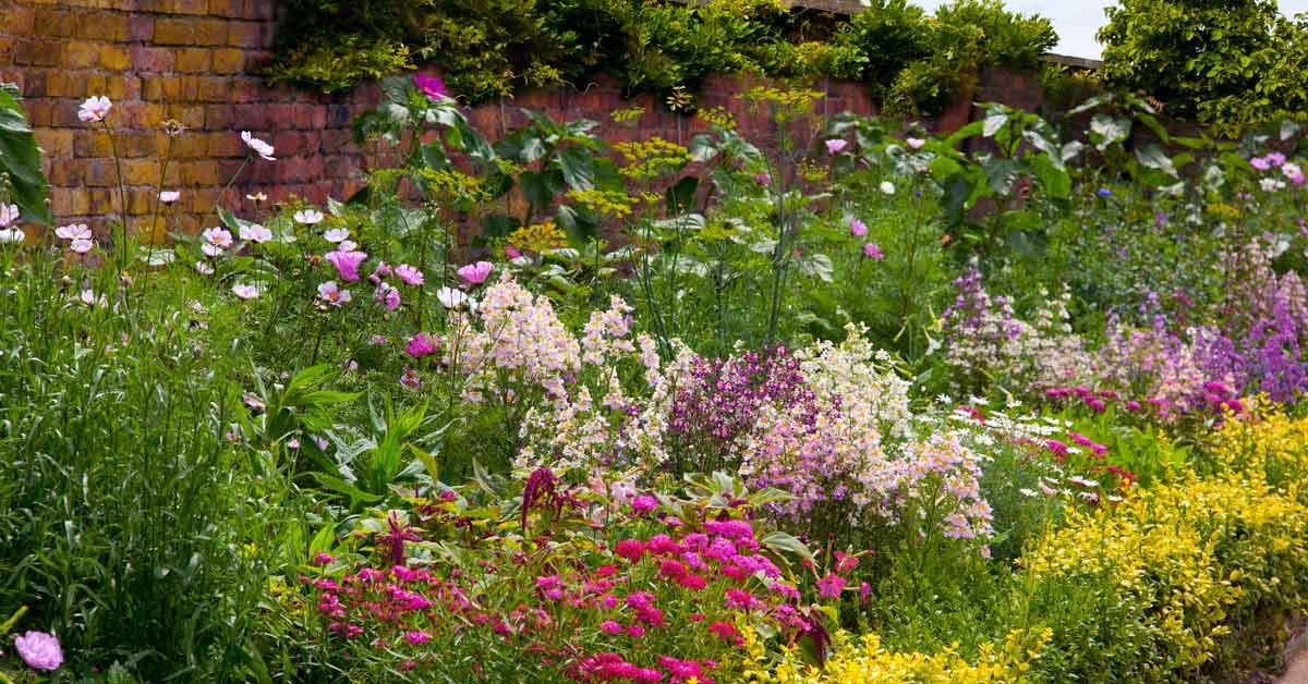 Een kleurrijke border aanleggen handige tips voor jouw tuin for Natuurvijver maken