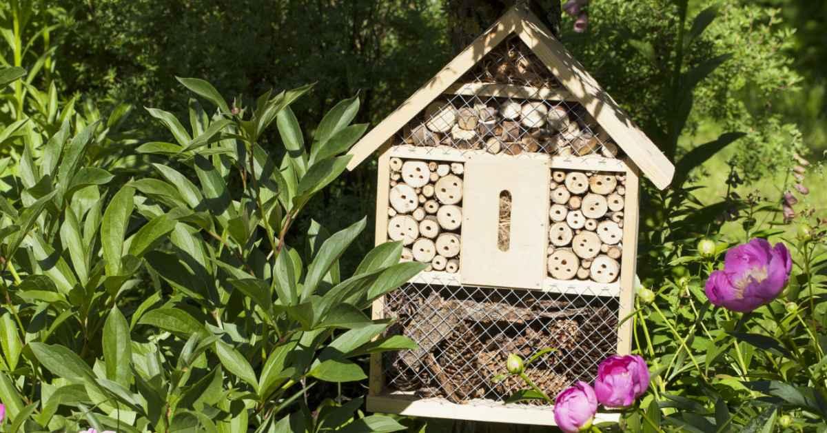 Insecten-hotel-tussen-planten
