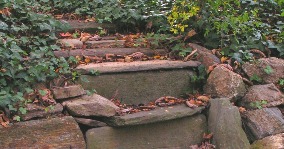 Natuurlijke-trap-in-tuinpad