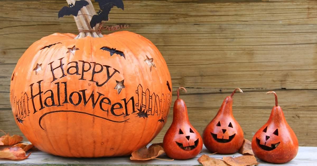 Pompoen Voor Halloween.Diy Een Halloween Pompoen Maken In 4 Simpele Stappen