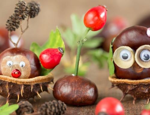 Haal de herfst in huis: knutselen met kastanjes