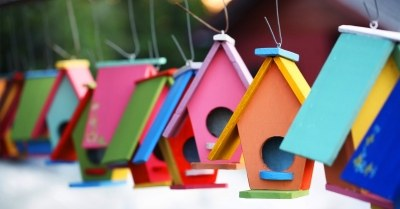 Vogelhuisjes maken