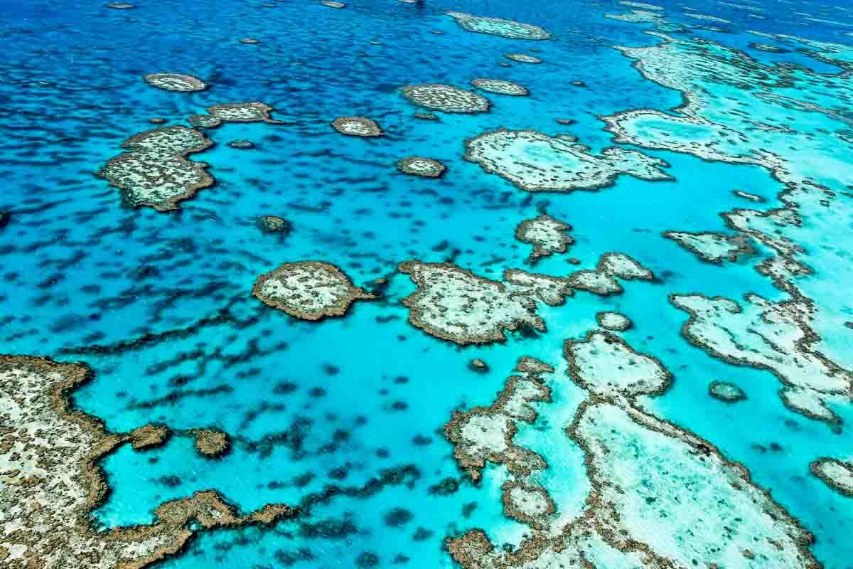 Great-barrier-reef-Australië