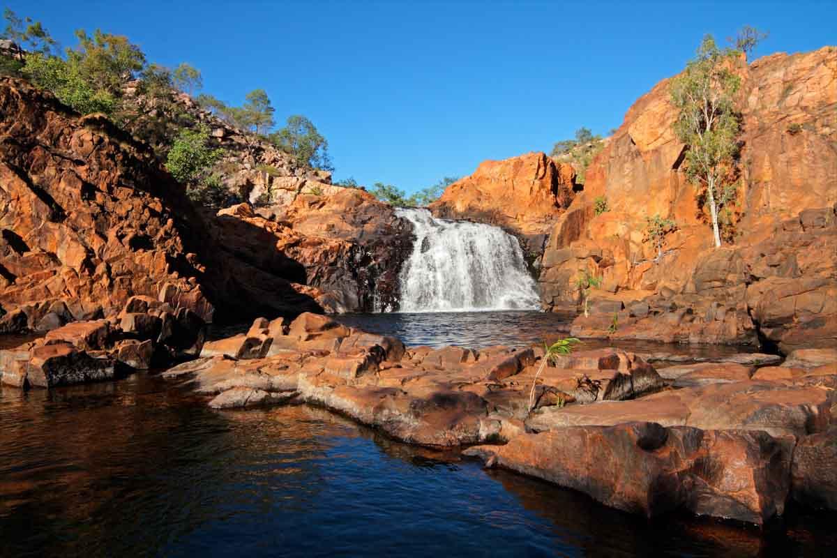 Kakadu-Australië