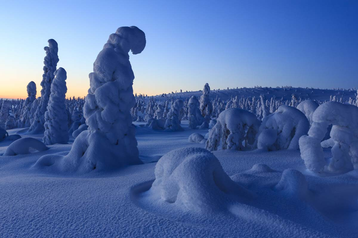 Riisitunturi-Rins-Lapland