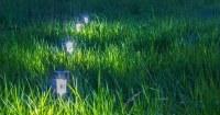 tuinverlichting-aanleggen-cover