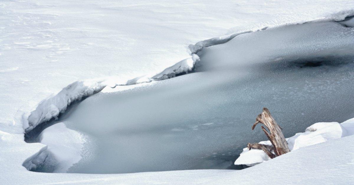 Bevroren-vijver