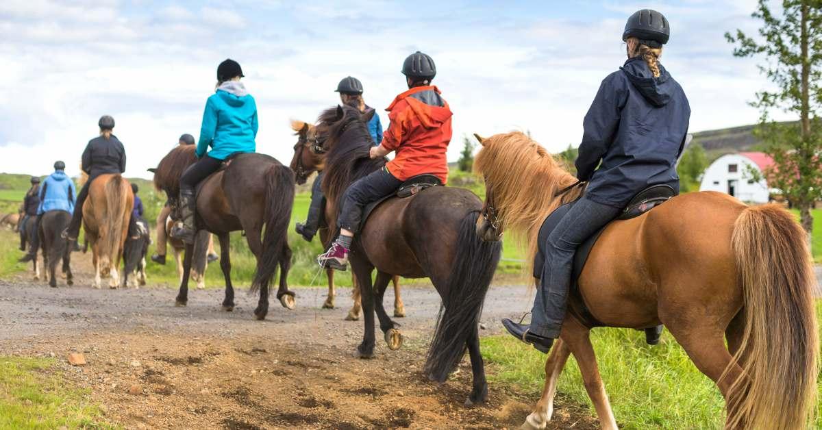 Paardrijden-in-Friesland-1