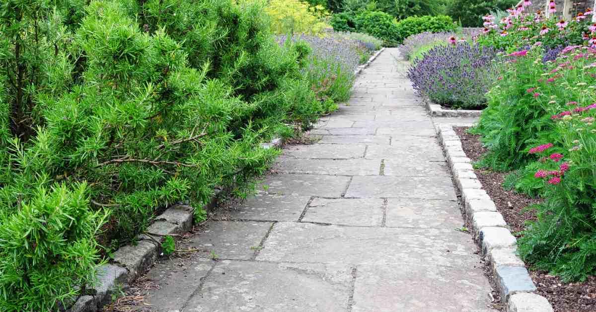 Voorbeelden van bestrating voor een kleine tuin