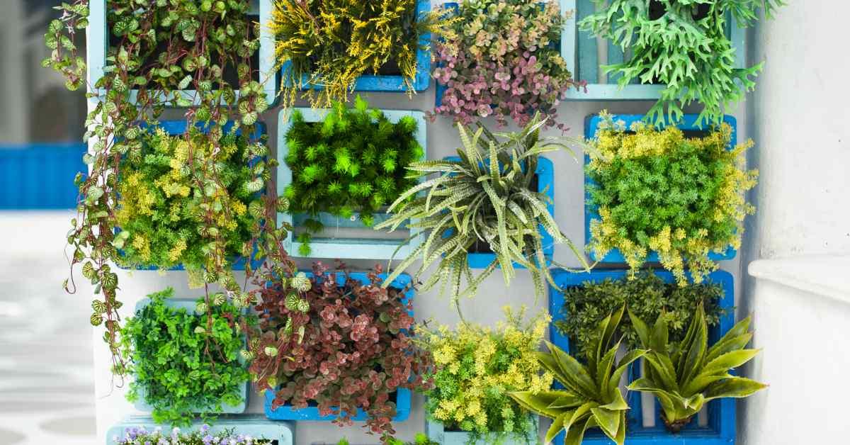 Kisten-met-bloemen