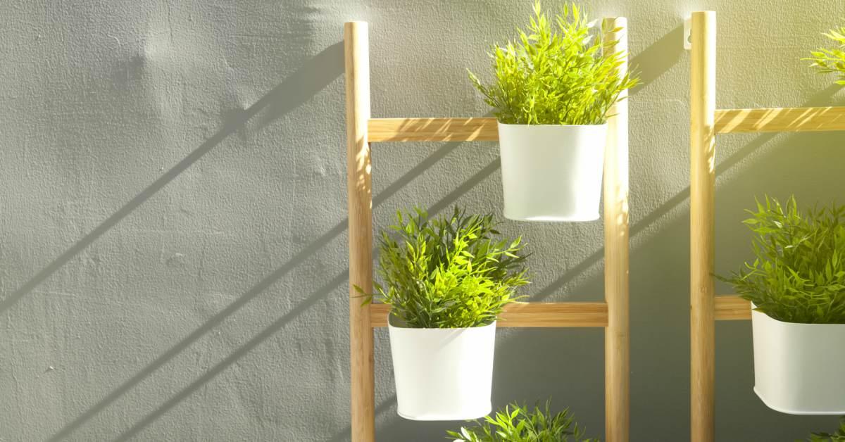 Ladder-met-planten