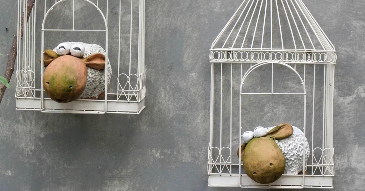 Lege-vogelhuisjes