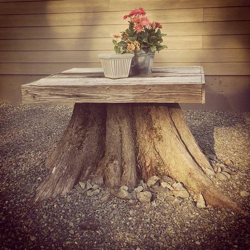 Tafel-op-een-boomstronk