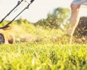 Gras maaien in de lente man