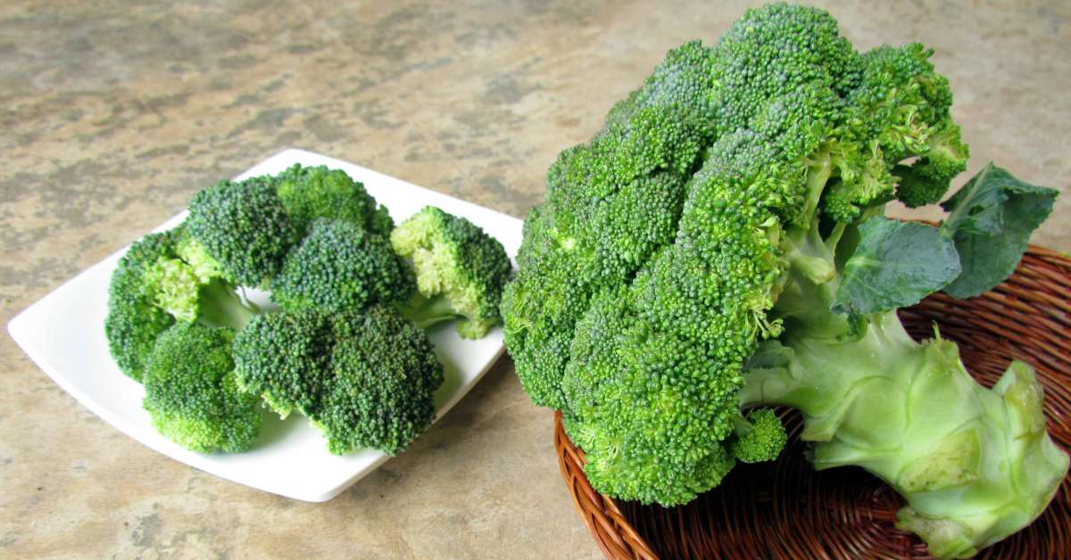 Broccoli-bewaren