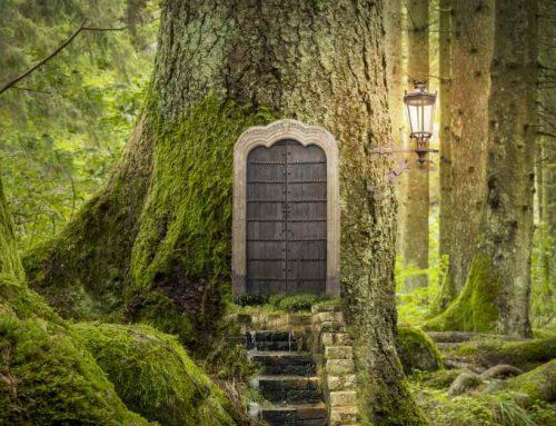 Het Maken Van Een Fairy Garden: Met Deze 11 DIY-Ideeën Komen De Elfjes Vanzelf Naar Jouw Tuin