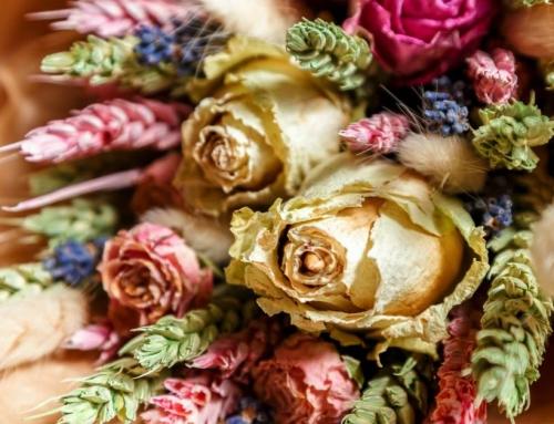 Nog Langer Van Je Bloemen En Planten Genieten? Droog Ze Met Een Van De 4 Methoden!