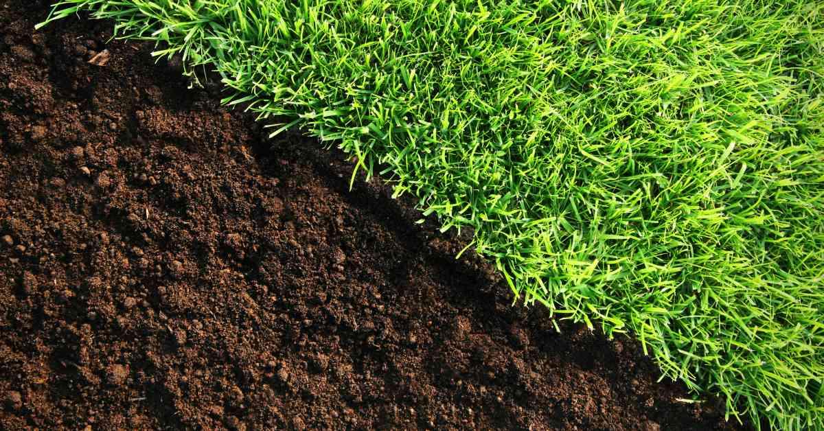 Grasmat en zandgrond
