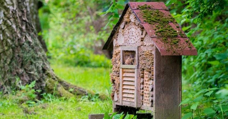Insectenhotel-in-de-tuin
