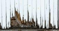 Rotte-planken-aan-de-onderkant-van-een-tuinhuis