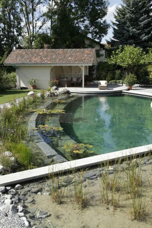 Natuurlijke-zwemvijver