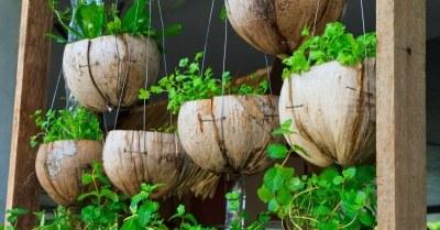 Hangende-potten-met-planten
