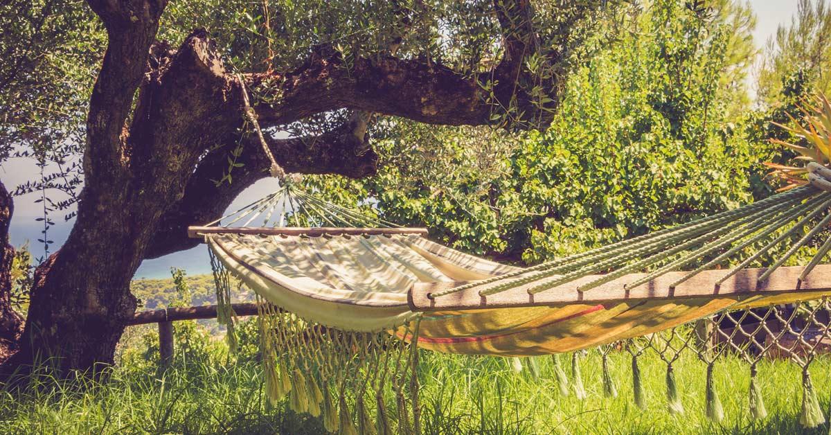 Schaduw in de tuin cre ren 14 snelle manieren voor verkoeling for Vliegen in de tuin