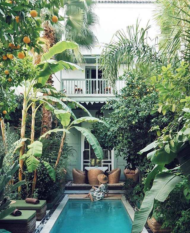 Buitenzwembad jungle