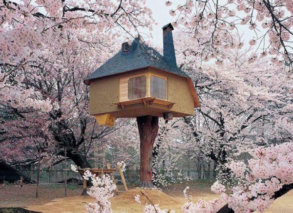 Japanse boomhut