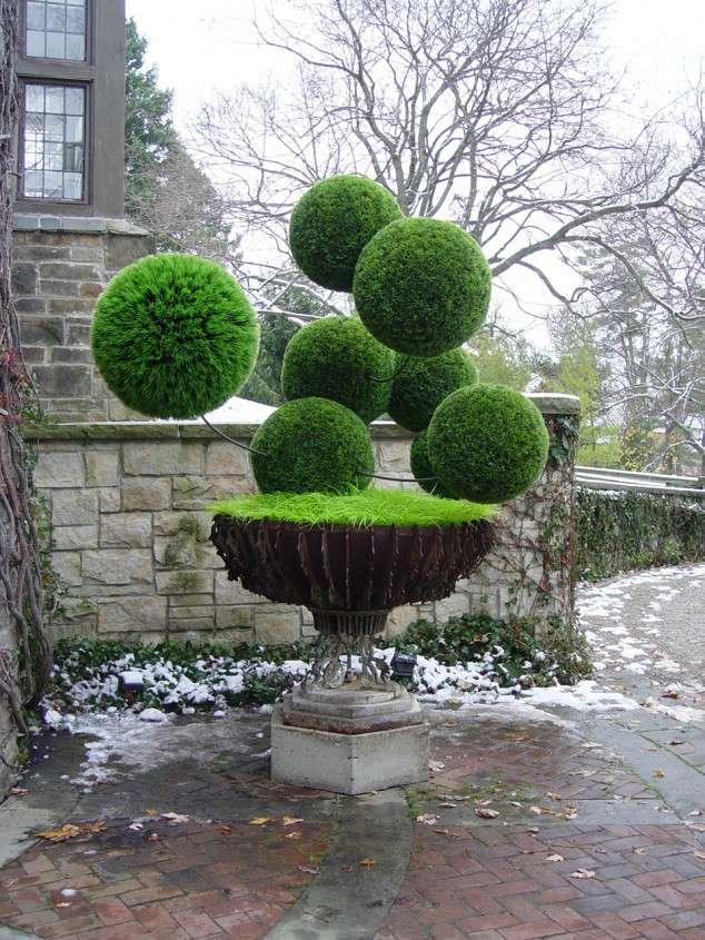Kunst van planten