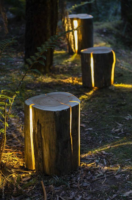 Lampen van boomstammen