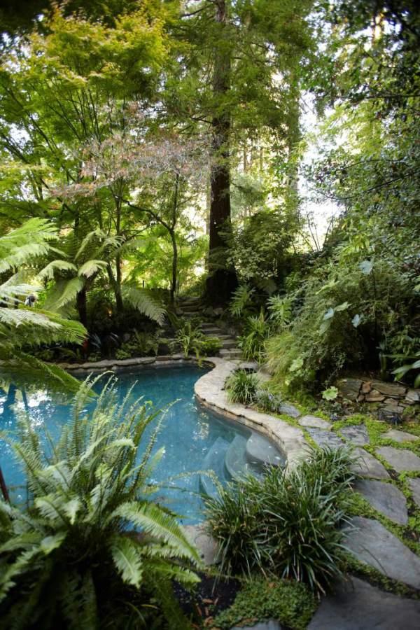 Zwembad in het bos