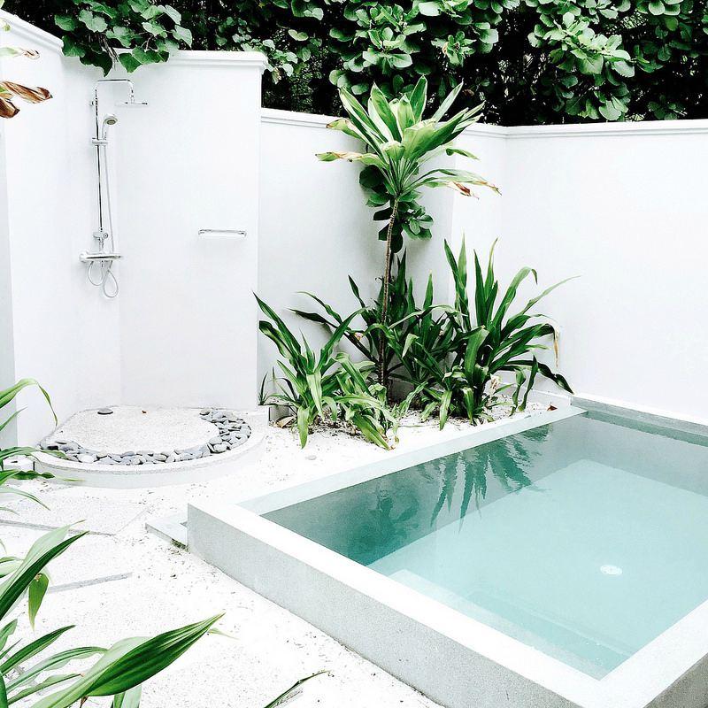 Zwembad palmbomen buitendouche